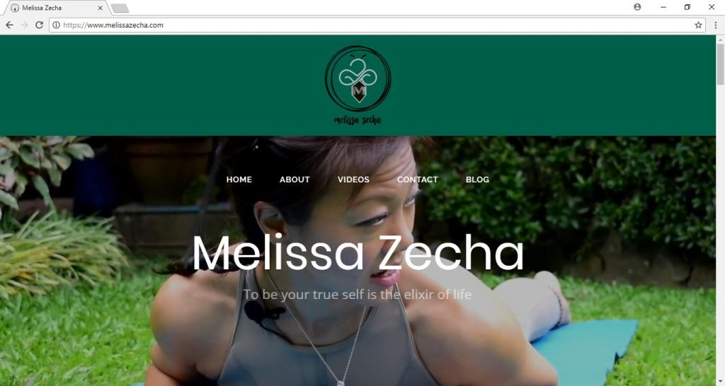 mellisa Zheca website